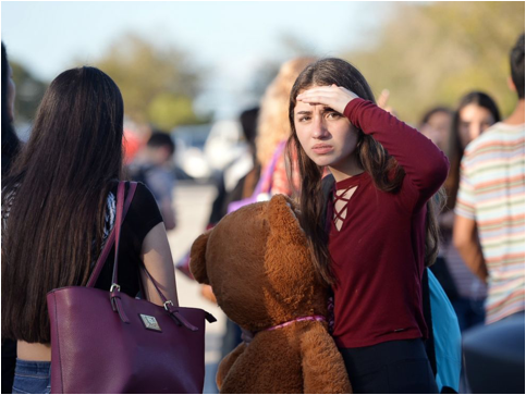 Marjory Stoneman Douglas High School Shooting